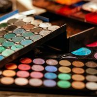 Professional Makeup Artist's Makeup Pallette